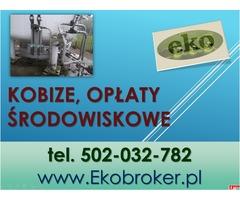 Raport do Kobize, Raportowanie, sprawozdanie, cena Warszawa, tel 502-032-782
